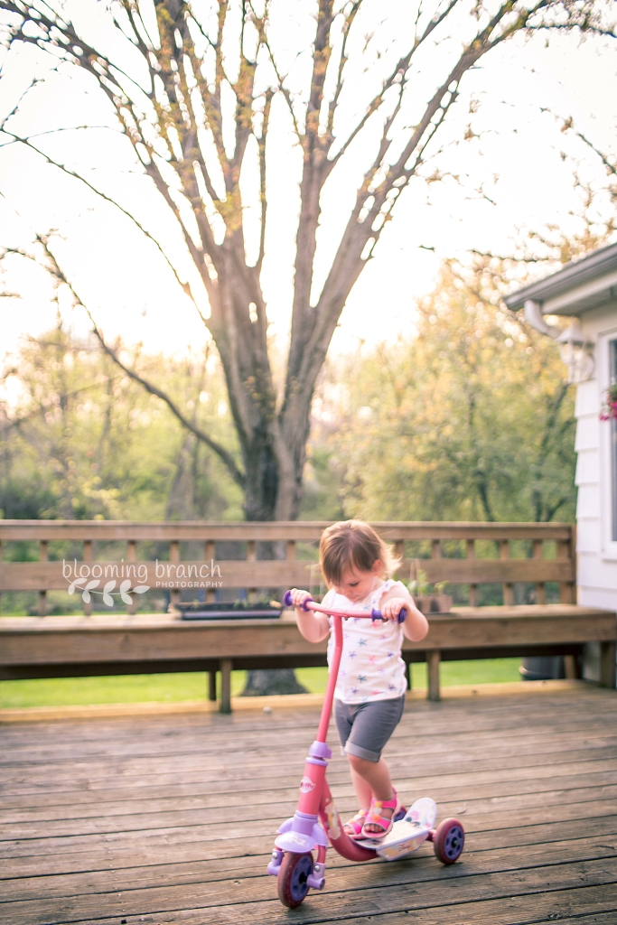 View More: http://bloomingbranchphotography.pass.us/ohio-fun-may-2015